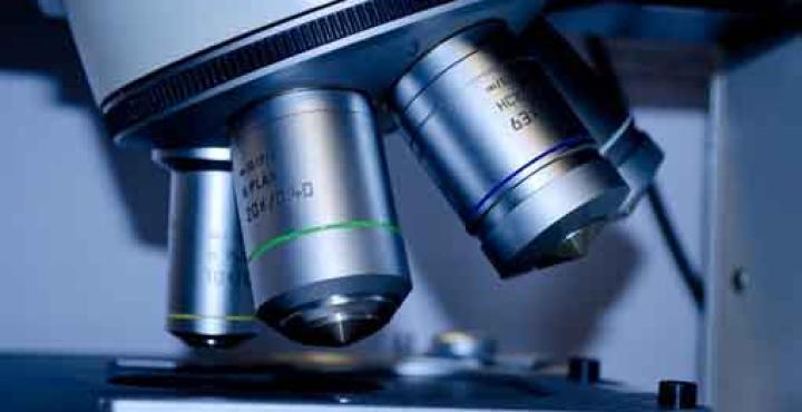 Upo, CAAD e Scuola di Medicina insieme per la ricerca contro il Covid-19