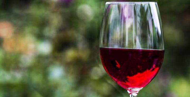 Coldiretti chiede aiuti per il settore vitivinicolo
